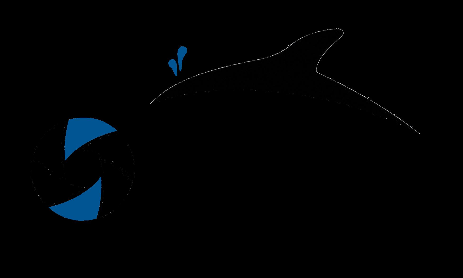 ORCA MOTORS